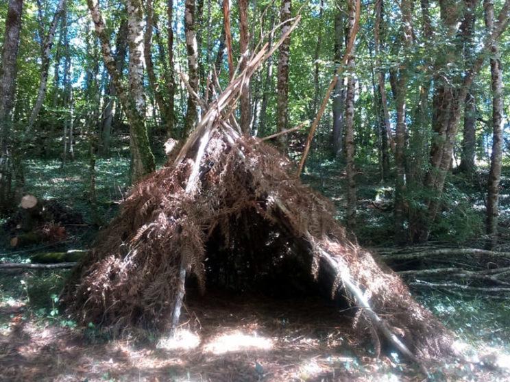 Hutte dans les bois