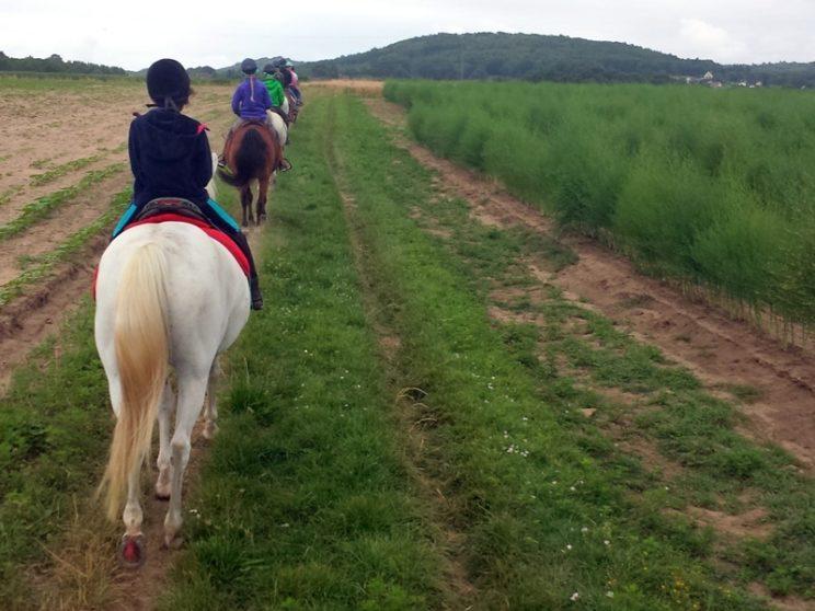 Equitation au Périgord