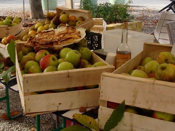 Marché - Fruits
